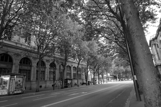 Take a picture of any street in Paris and process it as black & white, and you create an instant timeless photo of a Parisian street
