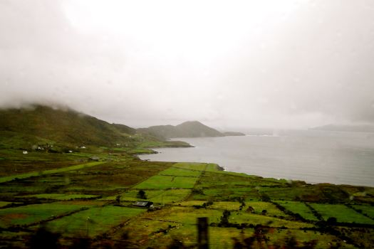 Even on a cloudy, rainy day, the green of Ireland is always on display.