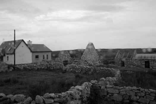"""The Irish Potato Famine story....this is a """"Famine Ghost Town"""". The famine occurred between 1845-1852. In 1840, the population of Ireland was 8 million. In 1860, it was 6.5 million (for the whole island of Ireland). Over a million died as a result and over a million left Ireland.  At this time, the land was owned by wealthy British nobles who had taken over the area centuries before. The people living on the land paid taxes in the form of either food of money made from selling food. The primary food grown was the potato because it produced a lot of potatoes from just one planting. From the potato, one can eat it, make bread, and a lot of other things that could not be obtained from other crops.  The famine was caused by a fungus that causes potatoes to rot in the ground, actually started in Mexico, spread to the eastern United States, and then made its way to Europe. Why was this such an impact to Ireland? The potato was the main source of food and income for the Irish at this time. So, as the crops began to fail year after year, the Irish could not eat nor could they pay taxes, and therefore they were forced to leave their lands and homes. They either fled to the Burren region of Ireland (and we saw how desolate that place is) or left Ireland all together."""