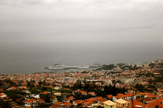 We started our trip with a bus ride up the mountain where the city of Funchal is located