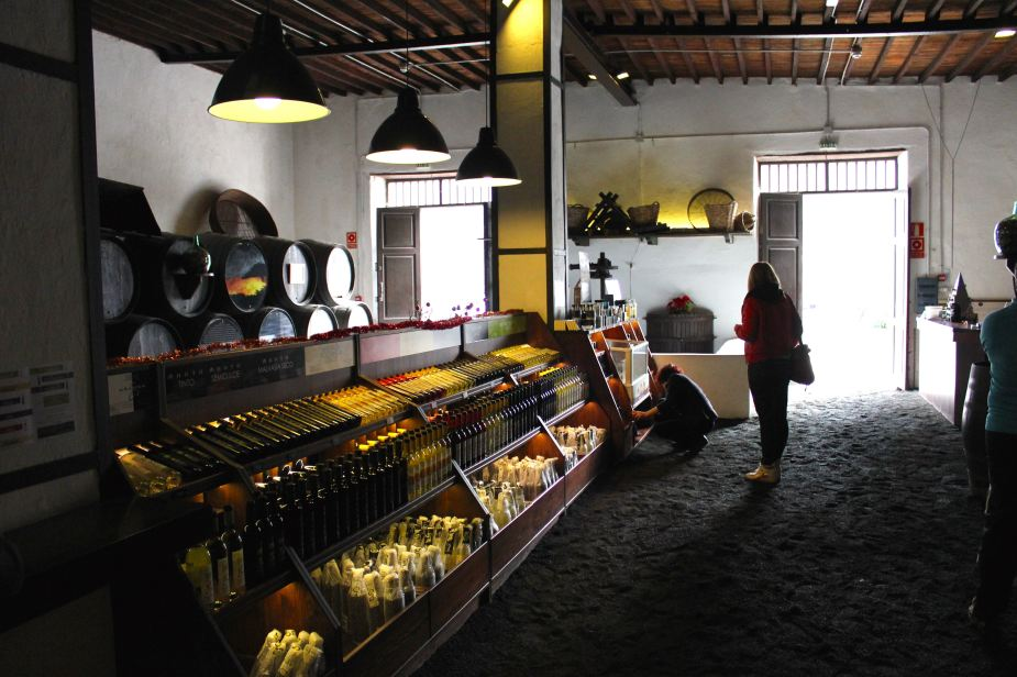 And, one of our stops was to have a wine tasting of the local wines created here. The wine was very sweet and strong, almost tasting like a cognac (brandy).  Here inside the Bodega la Geria Winery