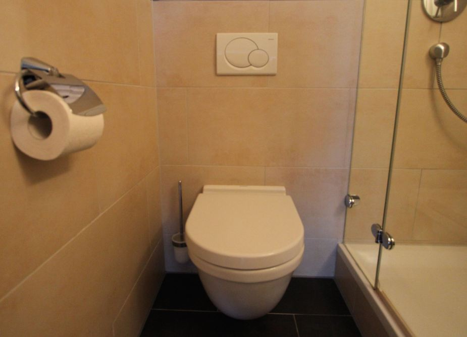 German toilet with the two button above and the brush beside it