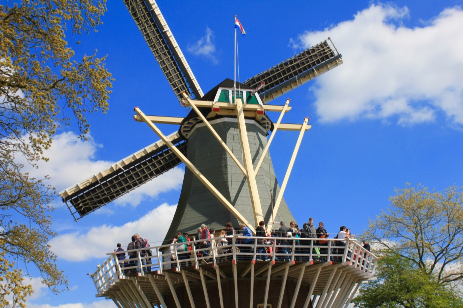Next to tulips, windmills have to be the most iconic thing about Holland.  Originally used to help pump water off the land, many of these old style windmills are still standing today in use and mainly as tourist attractions.  The Keukenhof Gardens have this very nice windmill on the edge of the gardens next to the very large tulip fields.